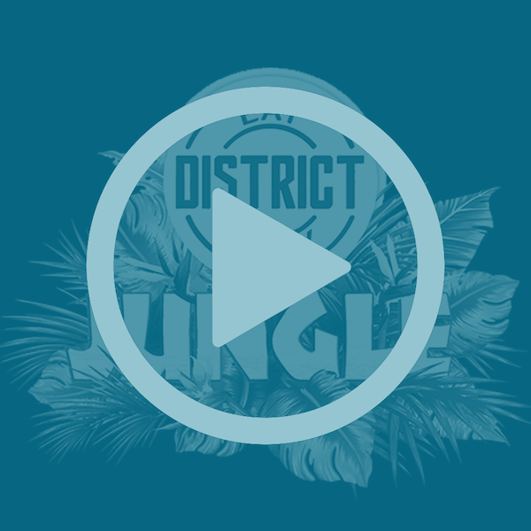 District Jungle