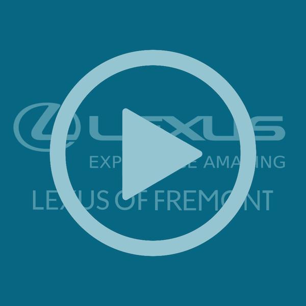 Lexus of Freemont